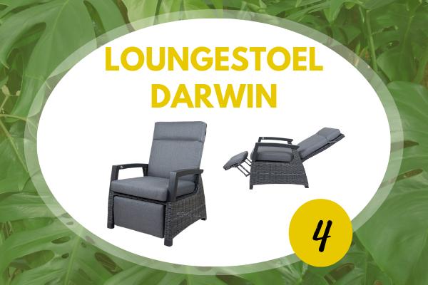 Robbies Tuinmeubelen Top 10 2021 - Loungestoel Darwin